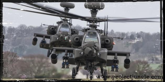 Apache Project™