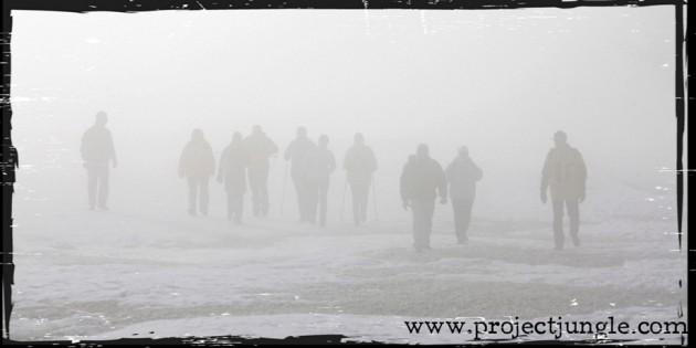 Fog Project